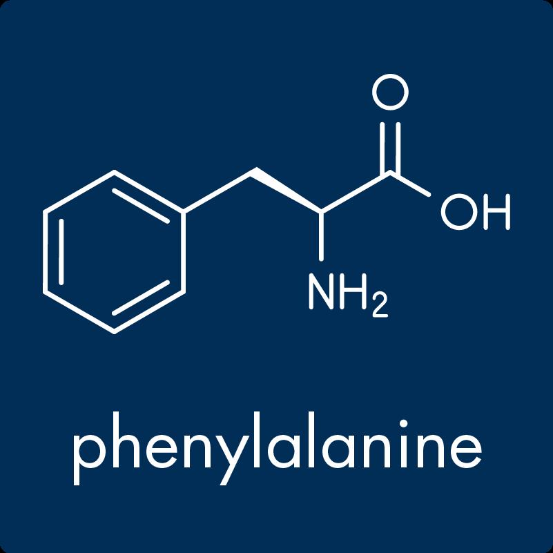 Image: Phenylalanine Molecule